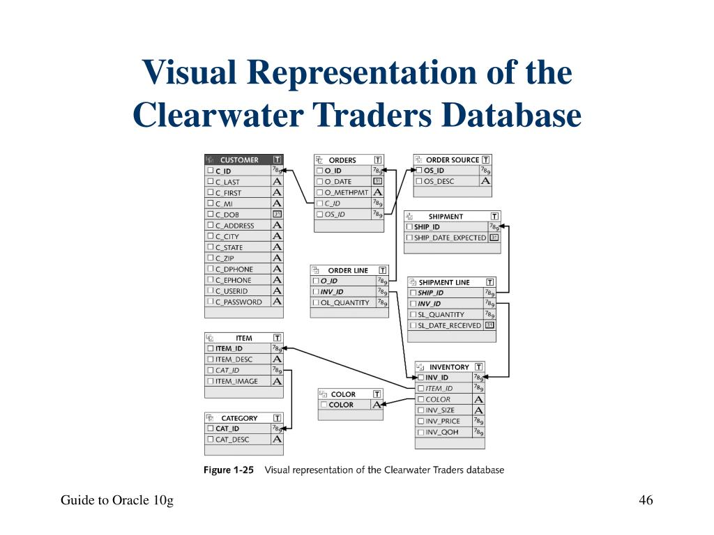 Visual Representation of the Clearwater Traders Database