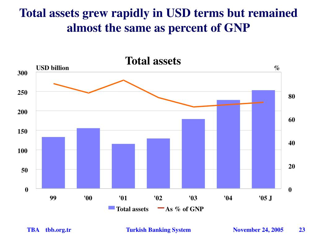 Total assets grew rapidly in USD terms but remained almost the same as percent of GNP