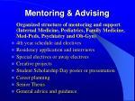 mentoring advising