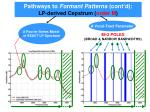 pathways to formant patterns cont d lp derived cepstrum order m