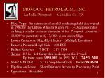 monoco petroleum inc la jolla prospect mcmullen co tx