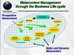 metacontent management through the business life cycle