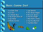 basic canine diet