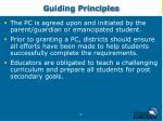 guiding principles19