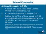 school counselor30