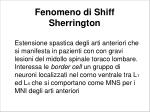fenomeno di shiff sherrington