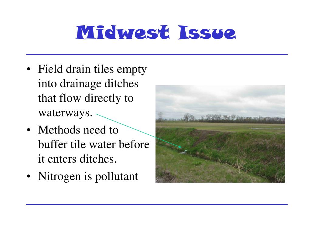 Midwest Issue