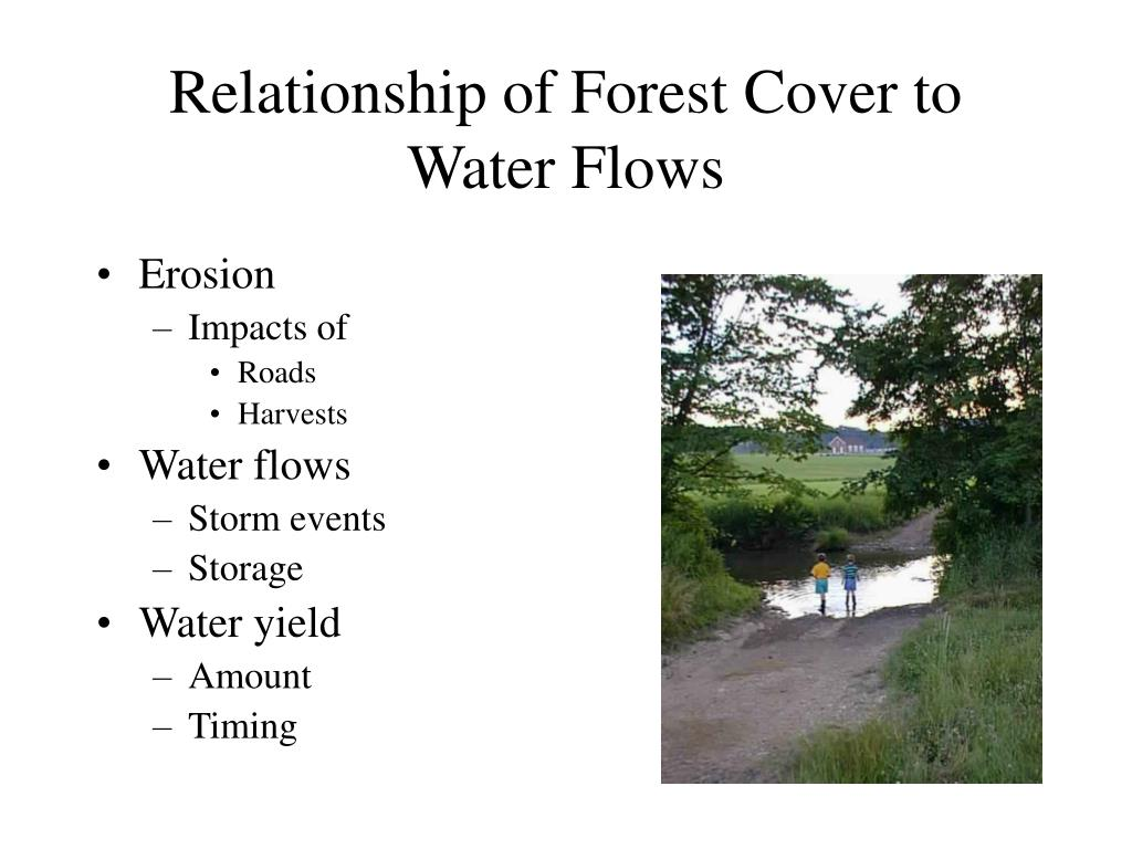 Relationship of Forest Cover to Water Flows
