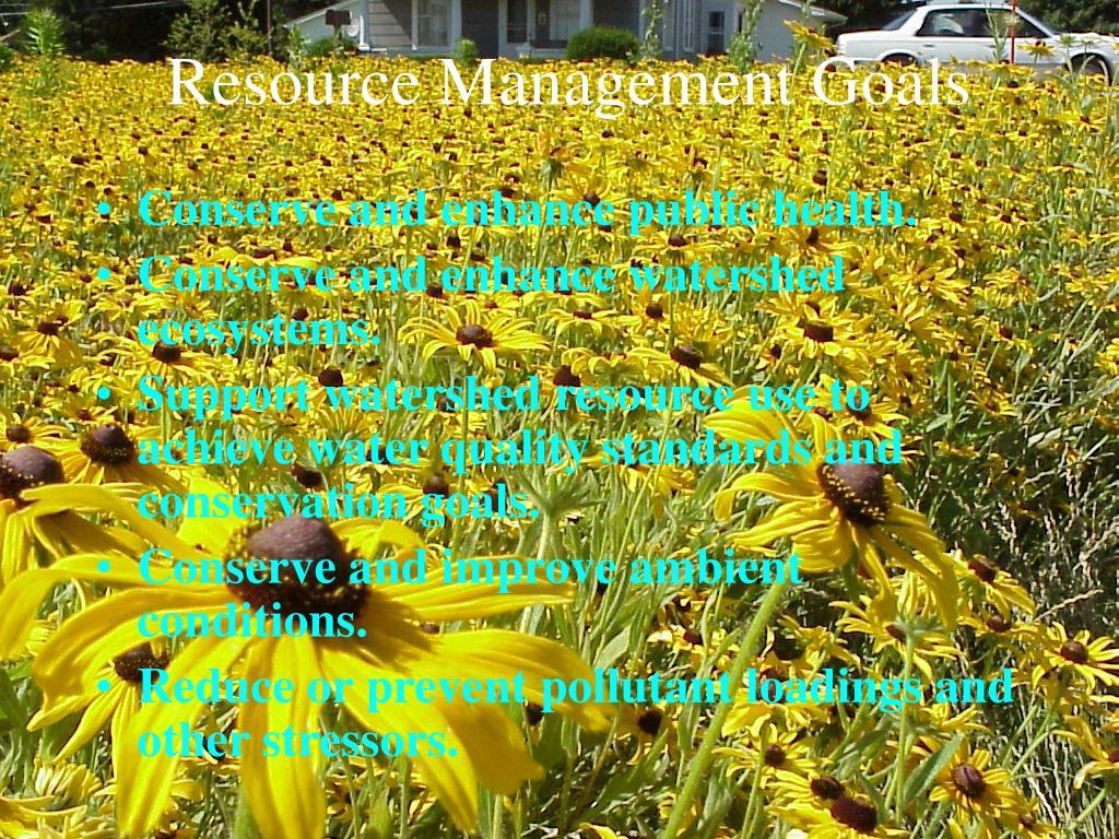 Resource Management Goals