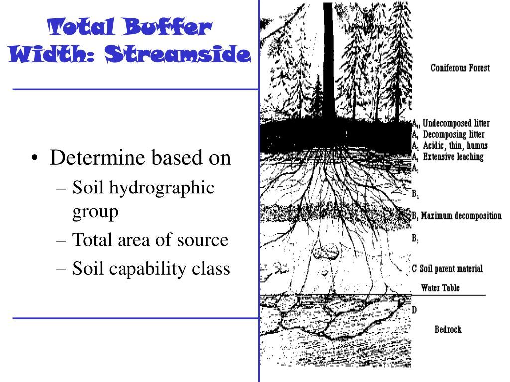 Total Buffer Width: Streamside