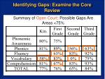 identifying gaps examine the core review15