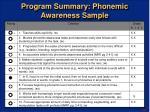 program summary phonemic awareness sample