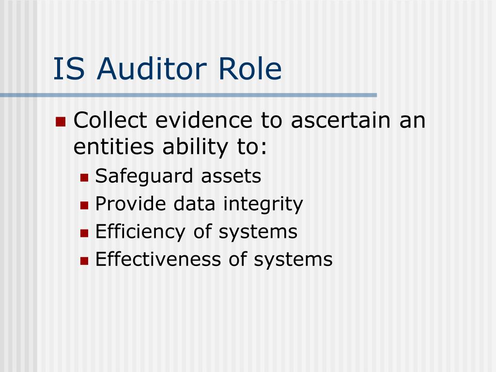 IS Auditor Role