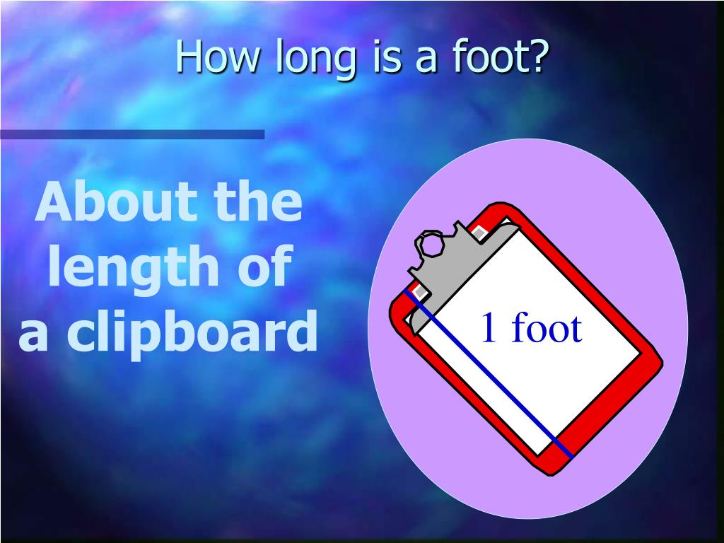 How long is a foot?
