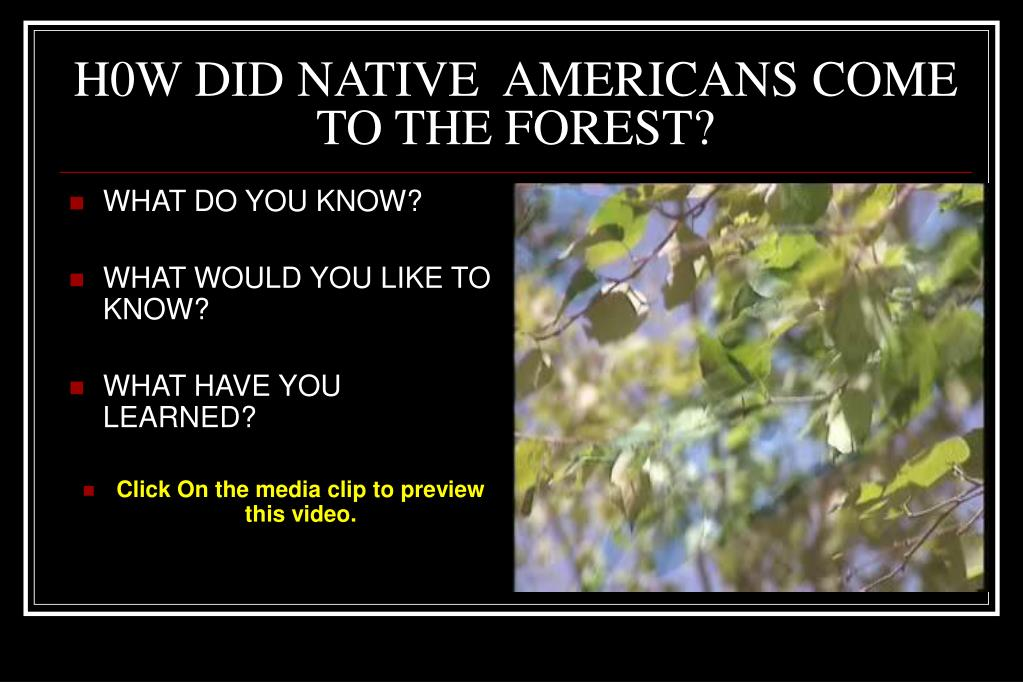 H0W DID NATIVE  AMERICANS COME TO THE FOREST?