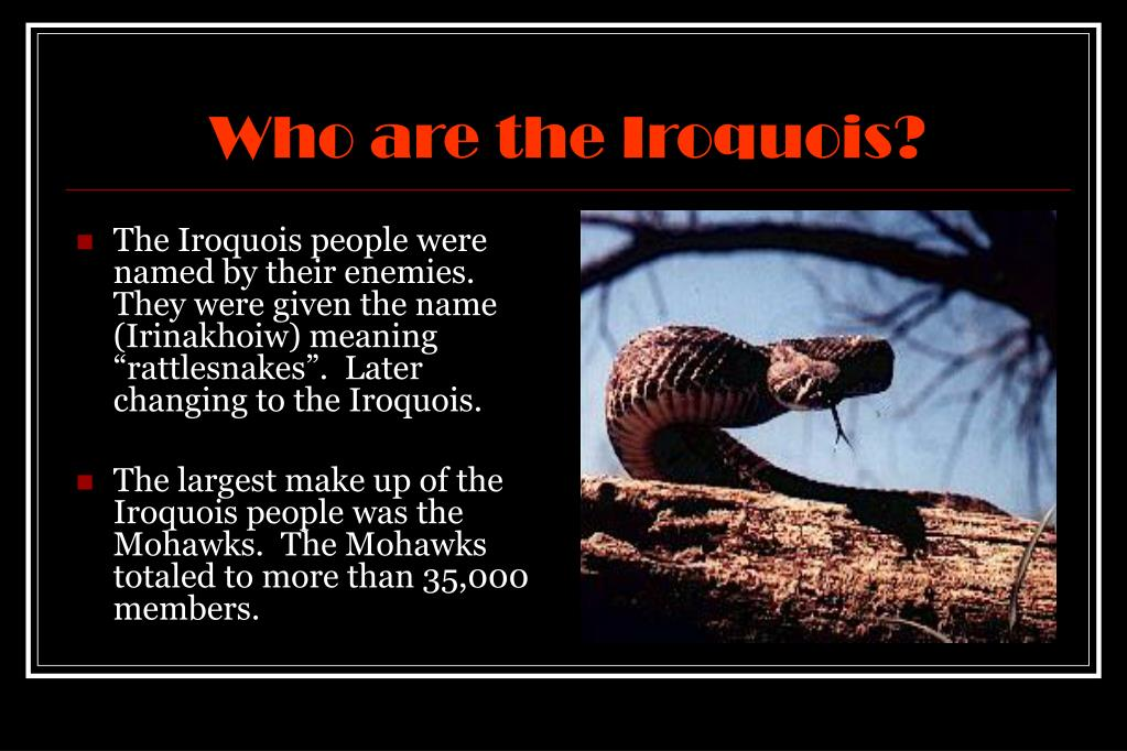 Who are the Iroquois?