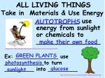 all living things take in materials use energy