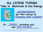 all living things take in materials use energy20