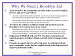 why we need a brooklyn jail