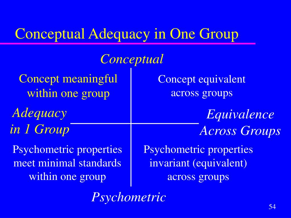 Conceptual Adequacy in One Group