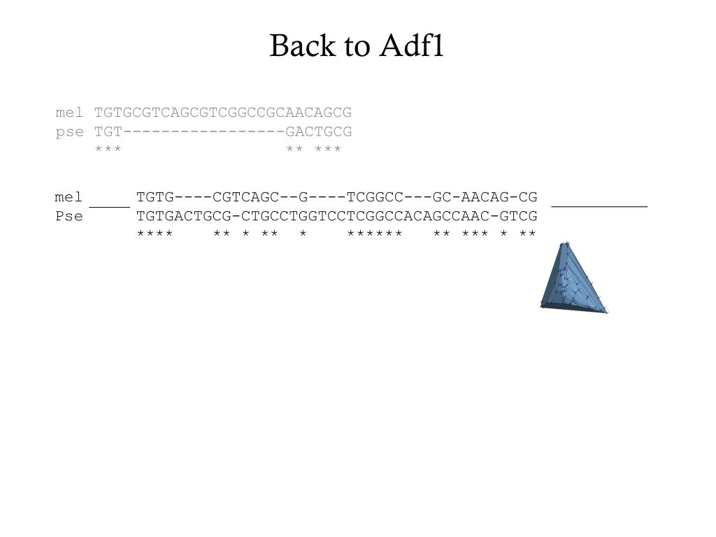 Back to Adf1