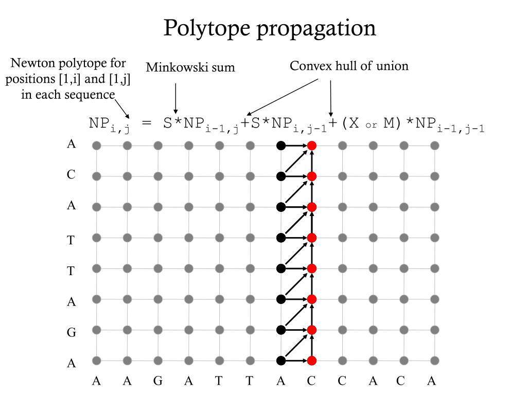 Newton polytope for