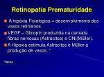 retinopatia prematuridade10