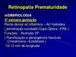 retinopatia prematuridade5