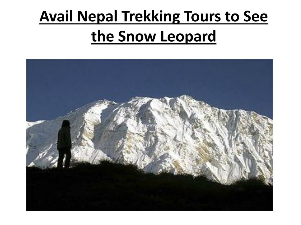 avail nepal trekking tours to see the snow leopard l.