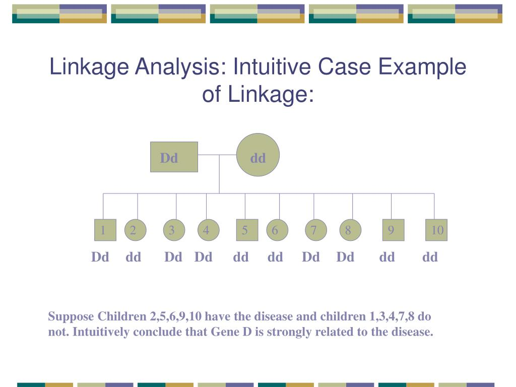 Linkage Analysis: Intuitive Case Example of Linkage: