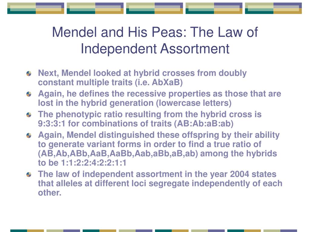 Mendel and His Peas: The Law of Independent Assortment