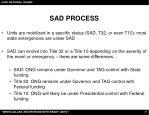 sad process21