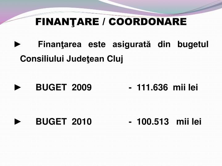 Finan are coordonare