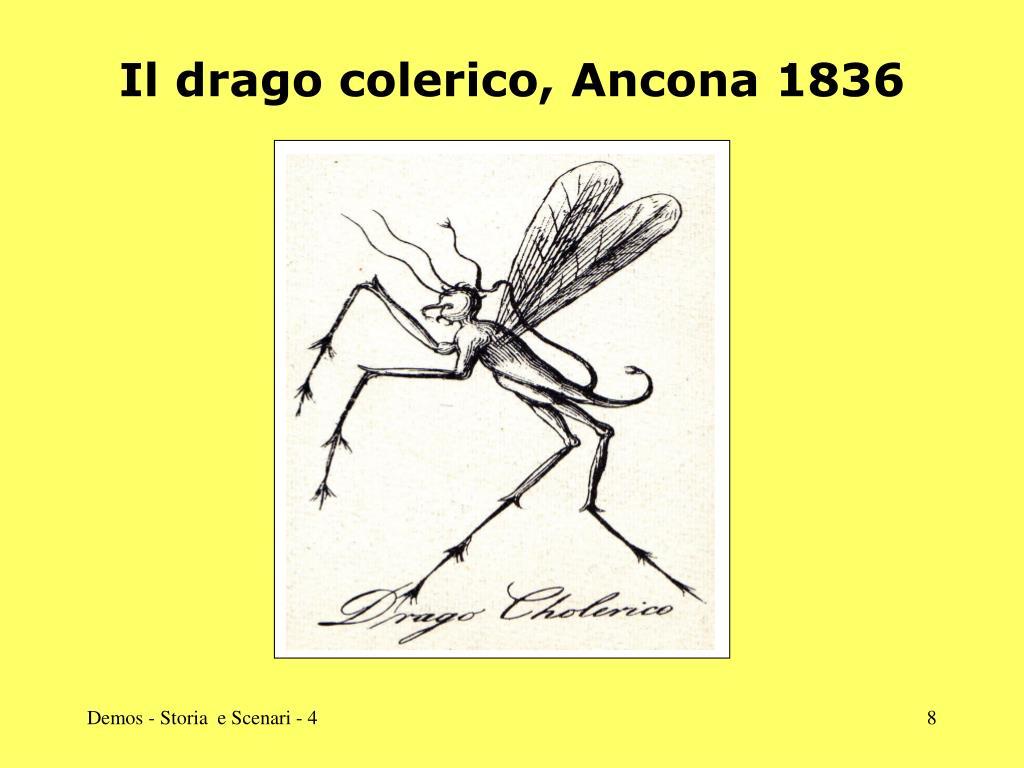 Il drago colerico, Ancona 1836