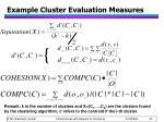 example cluster evaluation measures