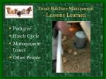 small hatchery management lessons learned