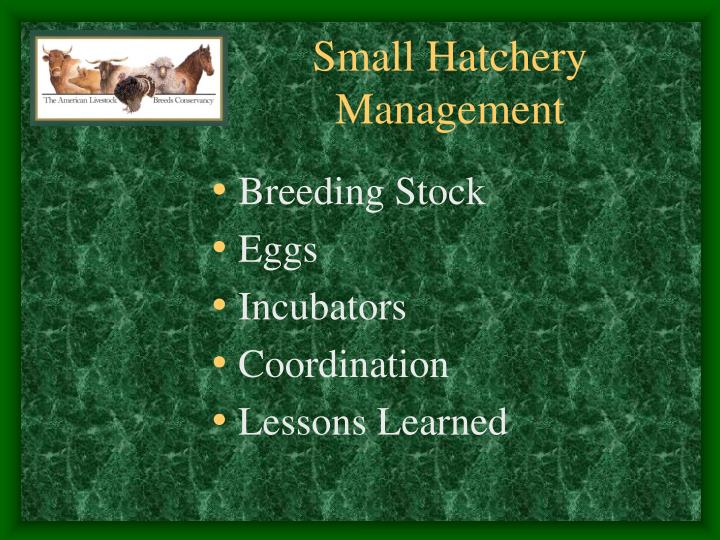 small hatchery management n.