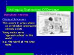 sociological explanations of deviance14