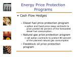 energy price protection programs