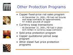 other protection programs