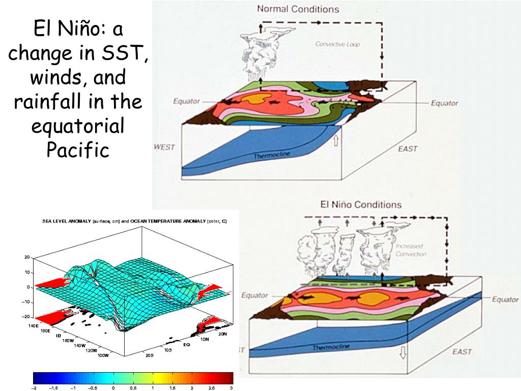 El Niño: a change in SST, winds, and rainfall in the equatorial Pacific