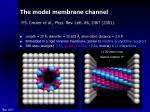 the model membrane channel p s crozier et al phys rev lett 86 2467 2001