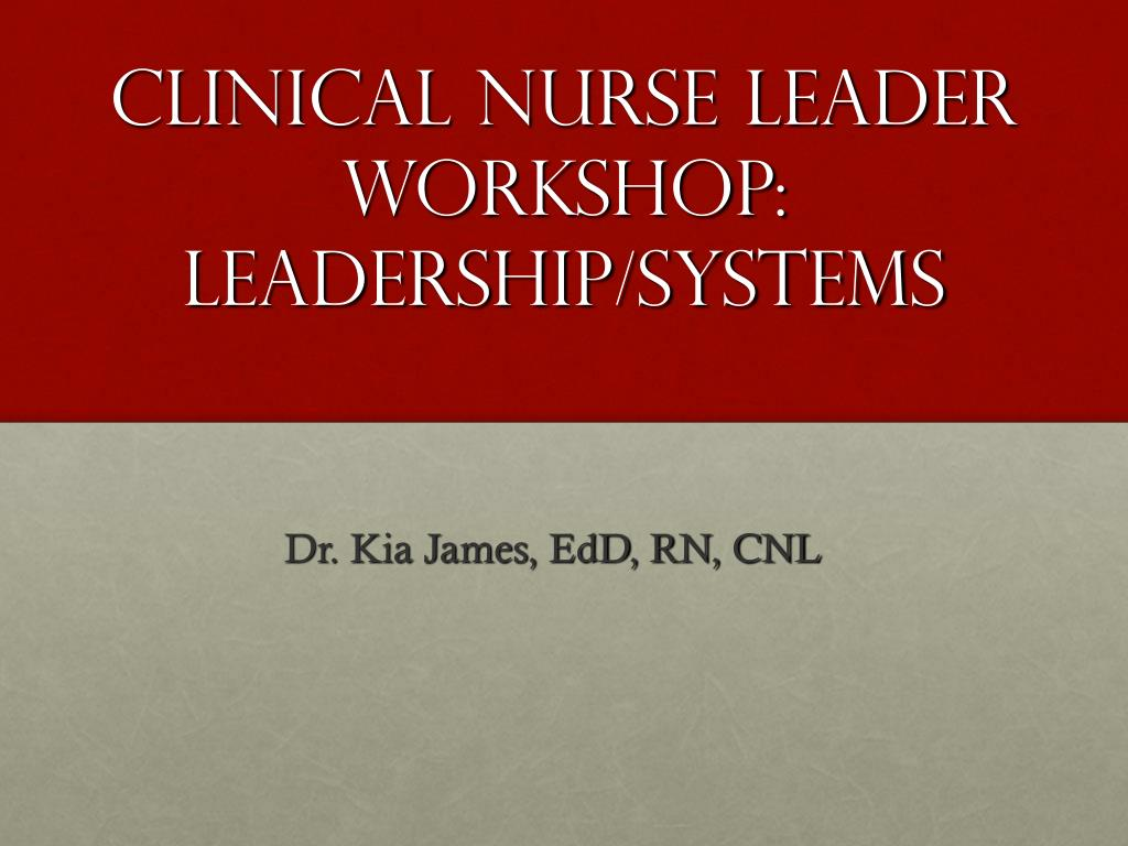 clinical nurse leader workshop leadership systems l.