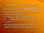 sociology of sport theory