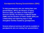 grandparents raising grandchildren grg4