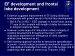 ef development and frontal lobe development25