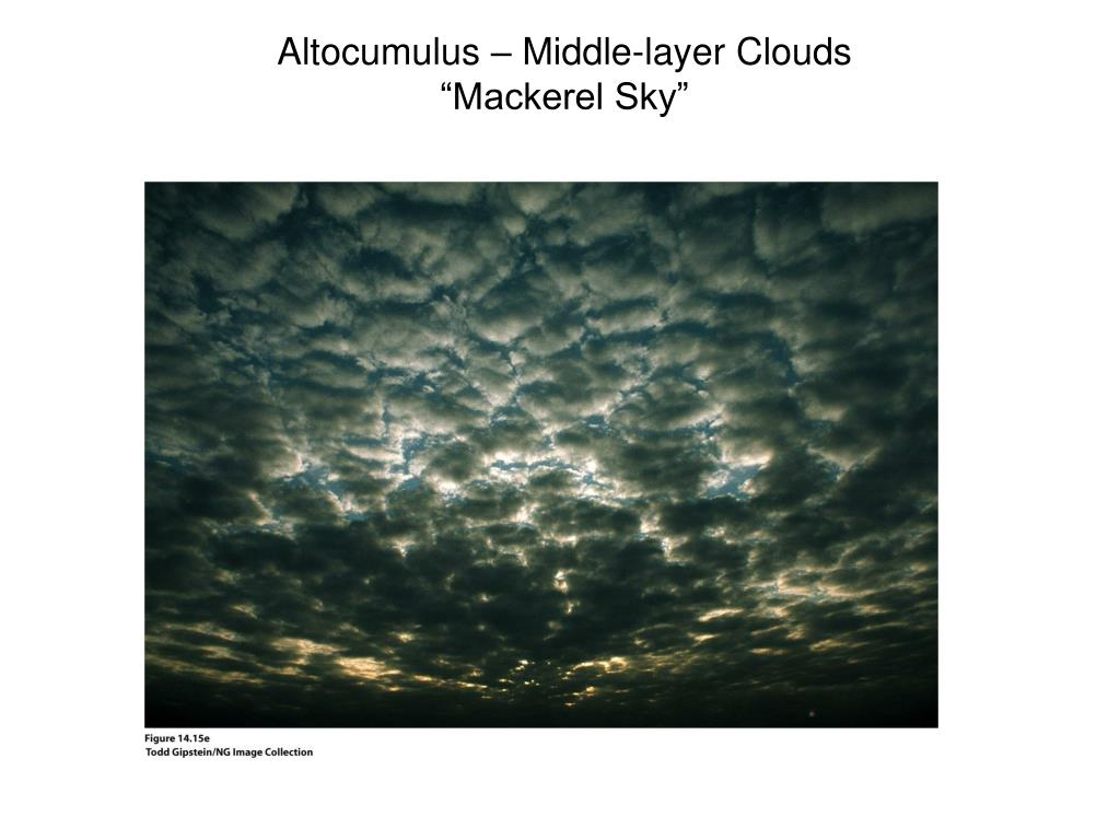 Altocumulus – Middle-layer Clouds
