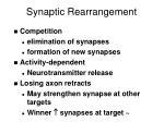 synaptic rearrangement