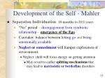 development of the self mahler15