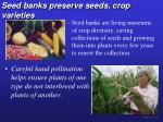 seed banks preserve seeds crop varieties